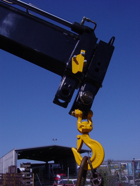 on board crane scales